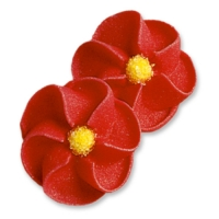 100 pcs Coquelicots rouges