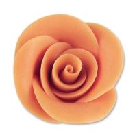 24 pcs Grandes roses, saumon