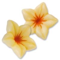 76  pcs Fleurs en chocolat blanc