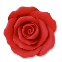 24 pcs Grandes roses, rouges