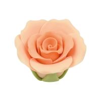 30 pcs Moyennes roses, saumon